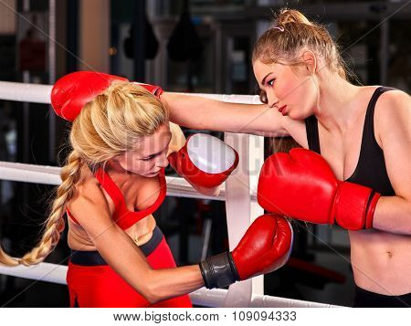 Two  women boxer wearing red  gloves to box in ring work sport reception