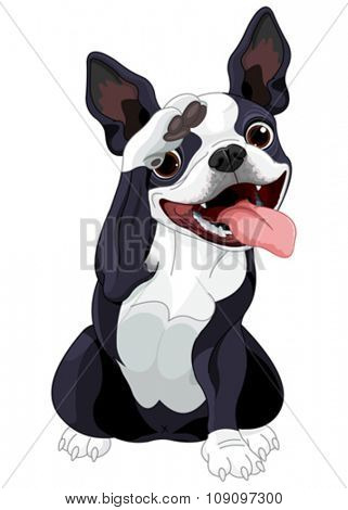 Illustration of Boston terrier saluting