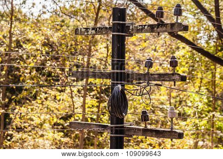 Small Telegraph Pole