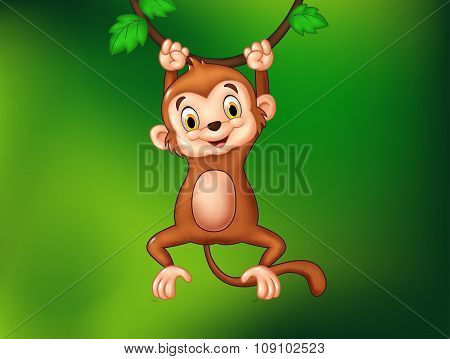 Cartoon funny monkey hanging on a vine