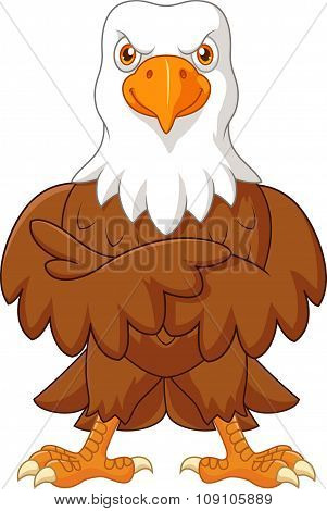 Cute eagle cartoon posing isolated on white background
