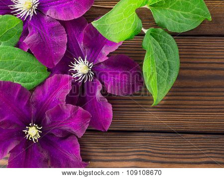 Three Purple Clematis Flowers On The Wooden Planks