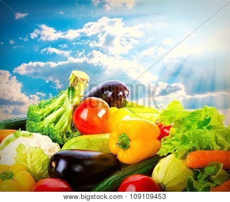 Fresh Vegetables Over Blue Sunny Sky. Harvest Concept Background