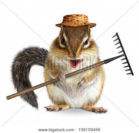 Funny Gardener Animal, Chipmunk With Rake And Hat Isolated On White