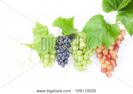 Bunch of red, purple and white grapes with leaves. Isolated on white background with copy space