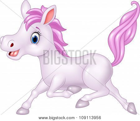 Beautiful pony horse running isolated on white background