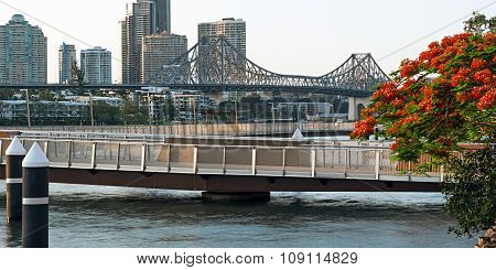 Newfarm Riverwalk in Brisbane