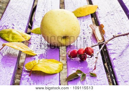 Still Life With Apple And Autumn Leaves
