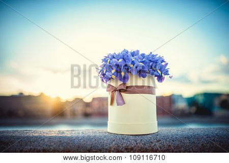 Beautiful bouquet of flowers outdoors
