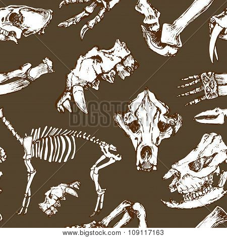 Sketchy Prehistorical Animals Pattern. Archeology Excavations, Skeleton And Skulls Seamless Vector.