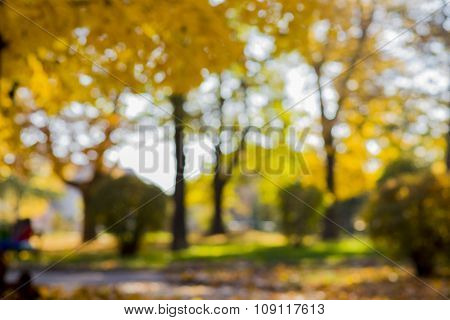 Autumn or spring abstract blurred background with a magic lights, out of focus golden lights