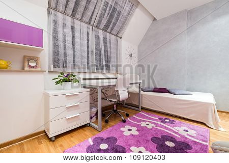 Interior Of A Teenage Girl Room