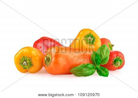 Bell Peppers Multicolored