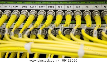 Yellow Network cables connected to the server - Switch and cable in data center