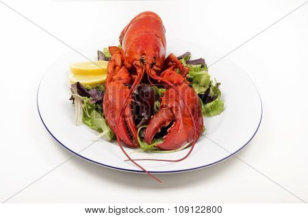 Lobster With Lemon And Salad On A Plate