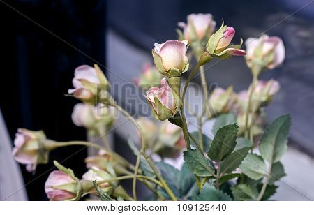 Artificial Small Fabric Roses