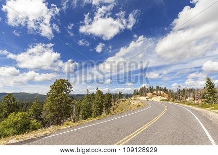 Scenic Road In Bryce Canyon National Park, Utah, Usa