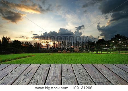 Wooden Floor With Paddy Field Background