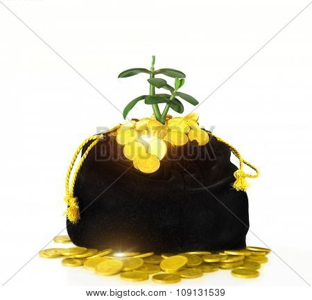 a bag of money. Black bag with gold coins
