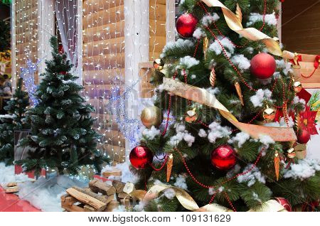 House Of Santa Claus, Christmas Trees And Reindeer