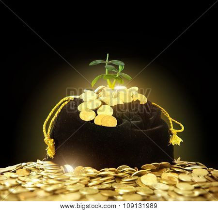 bag of money. Black bag with gold coins