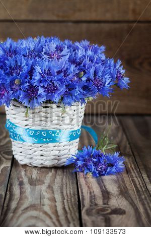 A bunch of beautiful summer flower of Cornflower in the white bucket.