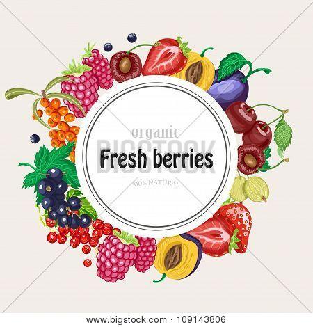 Vector Round Frame With Garden Berries