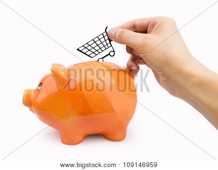 Saving With Shopping On The Groceries