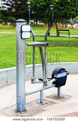 trainer for sporting activities in the city park