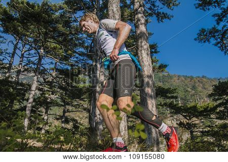 male runner of middle age runs through pine forest