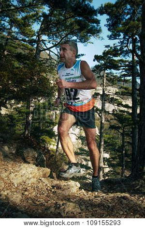 man, middle-aged runner runs distance of race forest trail of stones