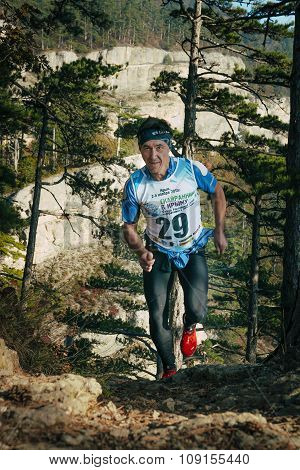man, middle-aged runner runs distance of race uphill in a pine forest