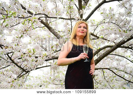 Beautiful Female With Glass Of Champagne In The Sakura Garden