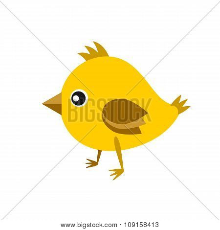 Little Cute Yellow Chick