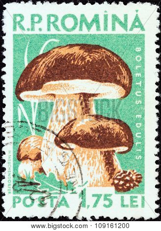 ROMANIA - CIRCA 1958: A stamp printed in Romania shows Cep (Boletus edulis)