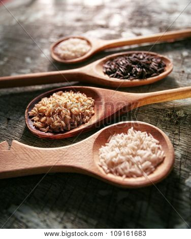 rice varieties : basmati, carolina, brown, wild black