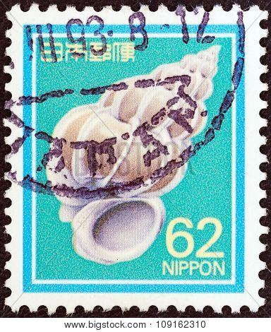 JAPAN - CIRCA 1989: A stamp printed in Japan shows Precious Wentletrap, circa 1989.