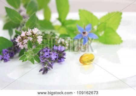 Fresh Herbs And Capsule