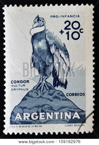ARGENTINA - CIRCA 1960: A stamp printed in argentina shows condor vultur gryphus