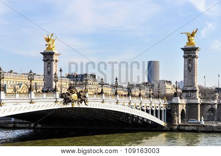Pont Alexandre III and Montparnasse Tower in the background in Paris, France