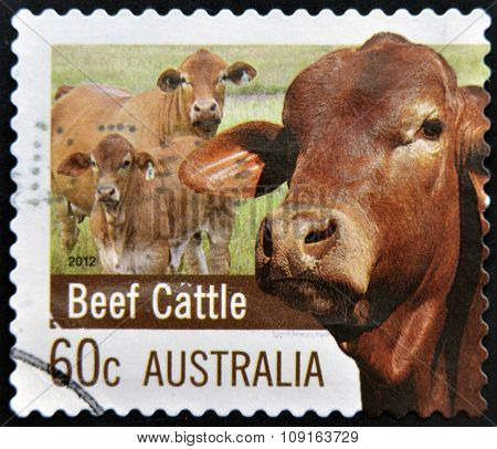 A stamp printed in Australia dedicated to Farming Australia shows Beef Cattle