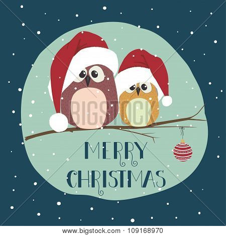 Two Cute Birds In Santa Clothes Sitting On The Branch