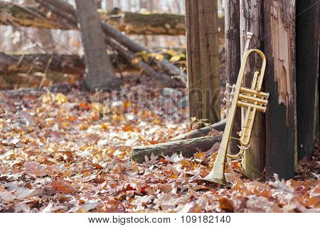 Trumpet Woods Fence