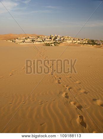 Desert Sand Dune