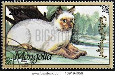 MONGOLIA - CIRCA 1991: stamp printed in Mongolia shows a cat circa 1991