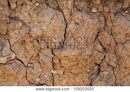 Dry Earth With Cracks
