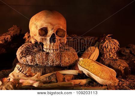 Still Life With Skull And Dry Fruit On Wooden Table