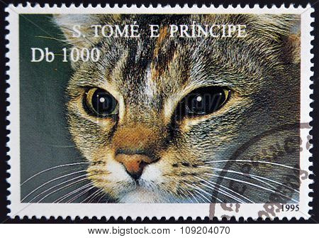 SAO TOME AND PRINCIPE - CIRCA 1995: A stamp printed in Sao Tome shows cat circa 1995