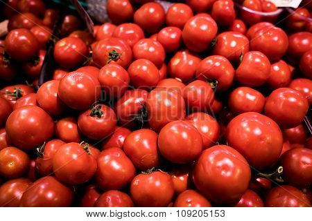 Tomatoes In Florence