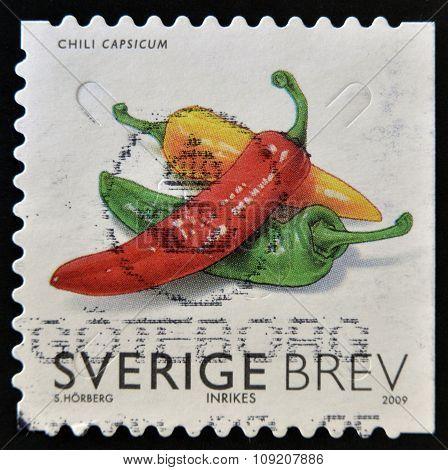 SWEDEN - CIRCA 2009: stamp printed in Sweden shows Hot pepper circa 2009